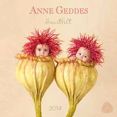 Anne Geddes 2014 Wall Calendar Heartfelt - PDF E-Books Directory Anne Geddes, Cute Kids, Cute Babies, Cute Baby Pictures, Photographing Babies, Beautiful Babies, New Moms, Baby Love, Calendar
