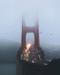 Follow @nature for top travel content. Foggy evening at Golden Gate Bridge San Francisco California. Photo by @jude_allen