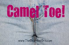 The year of the camel toe... So gross but, so 80's