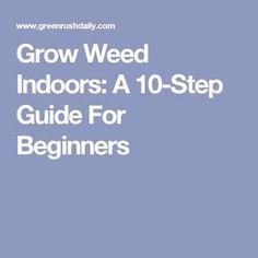 Pruning marijuana plants pinterest marijuana plants grow weed indoors a 10 step guide for beginners fandeluxe Image collections