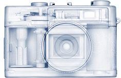 Max de Esteban - camera