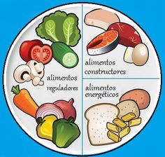 Baby Food Recipes, Healthy Recipes, Healthy Plate, Poster Drawing, Kids English, Kids Nutrition, Health Education, Science And Nature, Teaching Kids