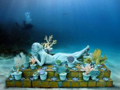 The Museo Subacuatico de Arte (MUSA) is an underwater museum located in the National Marine Park surrounding the Cancun, Isla Mujeres, and Punta Nizuc area. MUSA contains over 400 sculptures that provide areas for coral growth and contribute to available habitat for fish and other organisms.  #epluscancun #eplusvacation
