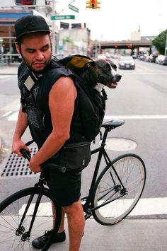 2b047081dcc1552ce8eb105685e94a66--cycling-bikes-fixed-gear.jpg 597×900 pixels