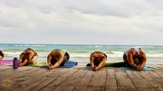 #yogastory Day 5: Another beautiful day in Tulum; at the beach, students go into half tortoise pose.  Come with us: www.evolationyoga.com/teach  #yoga #love #hotyoga #learn #beach #yogateachertraining #tulum #mexico #jungle