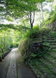 吉野 高城山(たかぎやま) 眺望 : 魅せられて大和路
