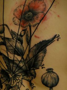 Flower and plant detail tattoo. Beautiful Tattoos, Cool Tattoos, Female Body Art, Detailed Tattoo, Get A Tattoo, Body Mods, Red Poppies, Tattoo Inspiration, Flower Designs