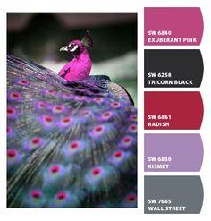 ‿✿⁀ Peacock ‿✿⁀ ColorSnap by CNH
