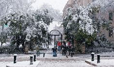 It rarely snows in Georgia, and when it does its usually no more than 4in. However, that little bit of snow brings people together. Picture of UGA arch :)