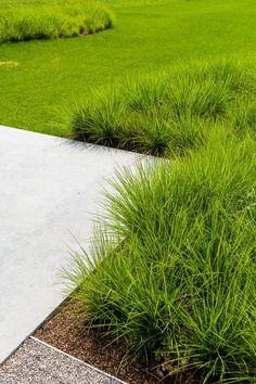 BURO BUITEN | Privétuin Schepdaal | Architectenburo Bart Coenen | Pieter Van Hauwermeiren | tuinarchitect | tuinarchitectuur | Landschapsarchitectuur Back Gardens, Small Gardens, Outdoor Gardens, Green Facade, Garden Deco, Garden Architecture, Garden Landscape Design, Outdoor Landscaping, Garden Inspiration