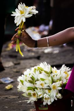 Lady selling Lotus flowers at Ganpati festival. Dagdushet Ganpati Temple, Pune.  Copyright © Sagar Kudtarkar. All rights reserved.