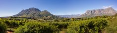 Simonsberg and Helshoogte Pass Vineyard, Mountains, Nature, Travel, Outdoor, Voyage, Outdoors, Viajes, Traveling