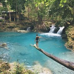 It's crazy how fast time flys when you travel. Exploring the Philippine jungles now seems like a distant memory. Throw back to just one month ago in Cebu, Philippines.