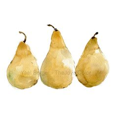 Pears art print  of 3 yellow pears, still life, yellow, fruit  print. kitchen art, Print of watercolor, minimalist art,  limited edition