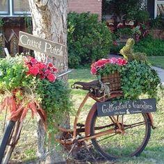 Como transformar uma velha bicicleta num objeto de jardim alegre. Tipo peça de design.                                                Sugestão Cris Paola