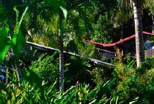 Piton Bungalows - des gîtes en pleine nature, pour des vacances authentiques en Guadeloupe à Deshaies