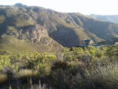 Magic location - Review of Eagle's Nest Guesthouse, McGregor, South Africa - TripAdvisor