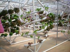 disney hydroponic garden - Google Search