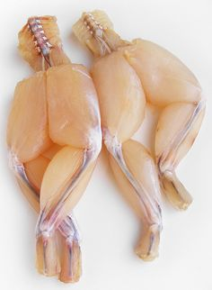 Fred Astaire & Ginger Rogers Frog Legs