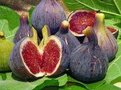 Lauro va perfecto con este sabor dulce segun el chef David Durán. Fresh Figs, Fruit, Eggplant, Avocado, Diet, Vegetables, Plants, Food, Paraiso Natural