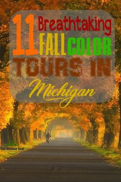 Where are you planning on heading to see the true beauty of fall's peak colors? If you are in Michigan this October, here are 11 amazing fall color tour ideas. Michigan Vacations, Fall Vacations, Michigan Travel, Michigan Colors, Fall In Michigan, Wisconsin, Charlevoix Michigan, Traverse City Michigan, Places To Travel