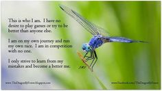 dragonfly meaning quotes - Buscar con Google                              …