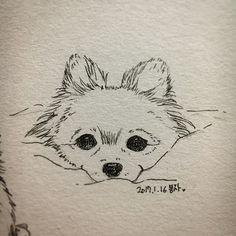 #pomeranian #pome #pomstagram #dog #dogstagram #petstagram #ポメラニアン #ポメラニアン #ポメラニアンクリーム #犬 #愛犬 #그림 #일러스트 #반려견그림 #강아지그림 #絵 #イラスト #picture #sketch #drawing