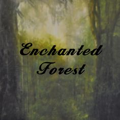Specialty Backdrop - Enchanted Forest
