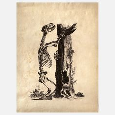 Print Bear Skeleton Design-Inspirationen auf Fab.