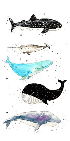 ideas cool wallpaper iphone art wallpapers for 2019 Iphone Wallpaper Whale, Cartoon Wallpaper, Animal Wallpaper, Iphone Wallpaper Drawing, Pattern Wallpaper Iphone, Tier Wallpaper, Painting Wallpaper, Trendy Wallpaper, Cool Wallpaper