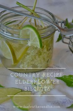 Make the most of elderflower season with our guide, plus a recipe for delicious cordial and biscuits for you to enjoy at home or as a great gift idea. Country Recipe, Great Recipes, Favorite Recipes, Elderflower, Cordial, Drink Recipes, Delicious Food, Biscuits, Herbs
