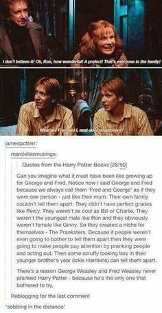 It's headcanon for me that only Harry could consistently tell them apart.