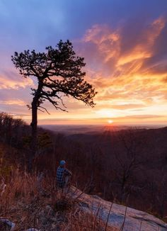"""Shenandoah National Park A winter sunrise from last year, featuring my favorite, """"Gone with the Wind"""" tree. Virginia Is For Lovers, Shenandoah National Park, Blue Ridge Mountains, Appalachian Trail, Charlottesville, Heaven On Earth, Mountain View, West Virginia, Sunrise"""
