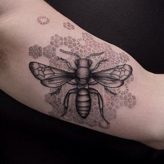 Bee and honey comb tattoo (I do not want any tats but I would definitely consider this one B.S.) LOL!