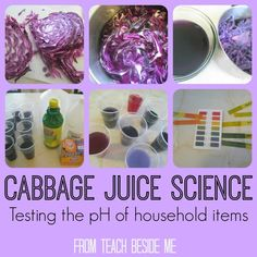Cabbage Juice Science from Teach Beside Me