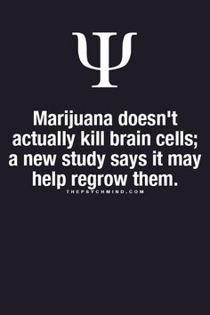 thepsychmind: Psychology facts here! thepsychmind: Psychology facts here! Psychology Fun Facts, Psychology Says, Psychology Quotes, Forensic Psychology, Understanding Psychology, Fact Quotes, Life Quotes, Weed Quotes, Stupid Quotes