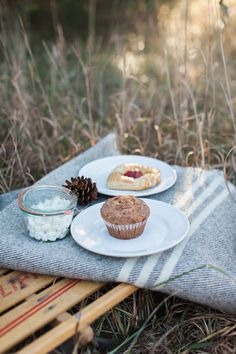 Winter picnic shoot- would be a cute idea for an engagement session