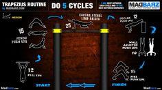 A trapezius/trap bodyweight workout infographic