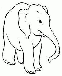 Wild animal coloring page | Elephant Family Coloring page | Baby ...