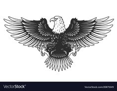 Buy Eagle Isolated on White Vector Illustration by imogi on GraphicRiver. Eagle isolated on white vector illustration. Eagle Back Tattoo, Eagle Wing Tattoos, Eagle Images, Eagle Pictures, Full Arm Tattoos, Chest Piece Tattoos, Traditional Eagle Tattoo, Eagle Art, Abstract Iphone Wallpaper