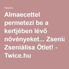 Almaecettel permetezi be a kertjében lévő növényeket. - Twice. Garden Pests, Pest Control, Organic Gardening, Amazon, Women, Amazons, Riding Habit, Women's, Amazon River