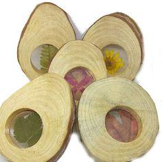 5 Rodajas de madera natural rellenas de hojas y flores naturales. Son ideales para experimentación en la mesa de luz. Quedan preciosas de decoración y combinadas con otros elementos naturales.  100% naturales, artesanas y hechas en España. Wood Slices, Mesas De Luz, Natural Wood, Leaves