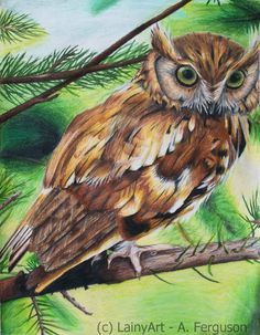 Wood Feathers  Framed Original Colored Pencil Drawing  by LainyArt
