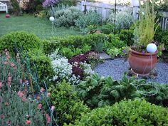 winter kitchen garden