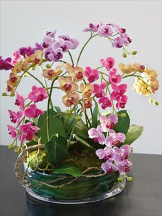 How To Keep Orchids Alive And Looking Gorgeous Beautiful Flowers, Orchid Flower Arrangements, Beautiful Orchids, Artificial Orchids, Orchid Centerpieces, Planting Flowers, Flower Arrangements, House Plants, Flower Arrangements Simple