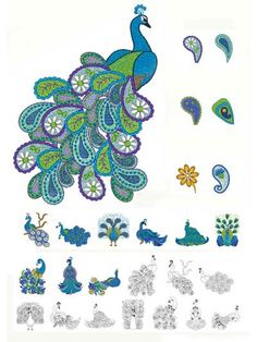 Paisley Peacock Embroidery Design Collection