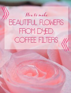 How to make BEAUTIFUL flowers from dyed coffee filters.