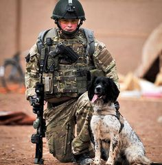 Theo, the British war dog who died last year within hours of his handler, is going to get the prestigious Dicken Medal - the canine equivalent of the Victoria Cross. So glad some other countries have such recognition of hero dogs. More here: http://www.thesun.co.uk/sol/homepage/news/campaigns/our_boys/4524908/Dead-war-dog-Theo-collars-canine-VC.html
