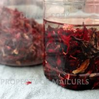 DIY Hibiscus Infused Almond Oil (Recipe Hibiscus Petals in Almond Oil Hibiscus Plant, Hibiscus Tea, Natural Hair Journey Tips, Hibiscus Recipe, Diy Hair Oil, Homemade Beauty Products, Hair Products, Infused Oils, Oils For Skin