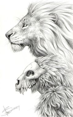 Maybe I'm a Lion by moth-eatn.deviantart.com on @DeviantArt   Main inspiration for looking through another's eyes